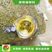 南昌進賢廚房專用廚具新型液化氣批發代理