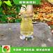 天津河東植物油前景節能生物燃油廠家地址,生物燃料廚房用油