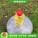 天津市場需求定制廚房植物油燃料安全環保,新能源燒火朗植物油燃料