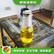 天津河東無醇燃料廠家節能生物燃油特價燃料,明火點不燃燃料圖片