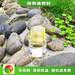 天津河东燃料油配比节能生物燃油油燃料制作,明火点不燃燃料
