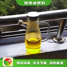 天津河東批發植物油節能生物燃油加盟合作方式圖片