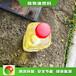 河北新樂超級節能高熱值燃料哪個劃算