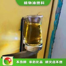 河北新樂四川新源素無醇植物油燃料多少錢一噸圖片