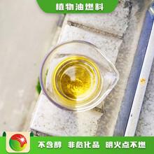 南京玄武區植物油招商廚房新型燃料廚房專用油圖片