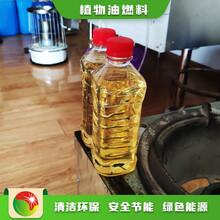 石家莊新樂植物油廠家無醇節能燒火油廚房專用油,價錢便宜的植物油燃料圖片