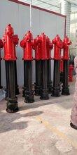 晟洋防撞調壓消火栓,綏化SST100/65地上消火栓圖片
