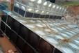 威海地埋BDF水箱厂家,抗浮式消防水池