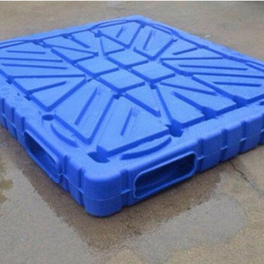 鄭州生產通佳塑料托盤設備量大從優,網紅九腳托盤設備