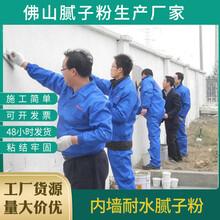 廣州多樂士抗裂外墻膩子粉安全可靠,內墻膩子粉圖片