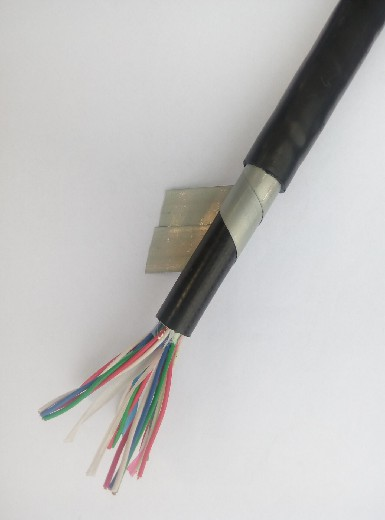 環保鐵路信號電纜PTYV款式