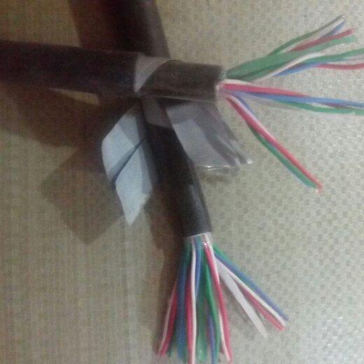 訂制天聯計算機電纜DJYVP量大從優