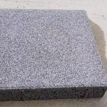 湖南長沙水泥磚燒結磚PC透水磚,隔熱板圖片