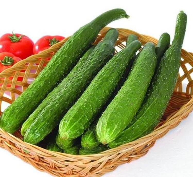 深圳蔬菜批發價格