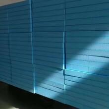 阿拉善盟XPS保溫擠塑板外墻保溫廠家直銷,XPS擠塑板圖片