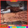 废旧高压电缆阿坝铜芯废旧电缆电缆回收公司