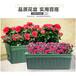 石家莊全新長槽花盆費用高架花盆質量優良