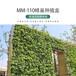 全新植物墻容器廠家容器種植