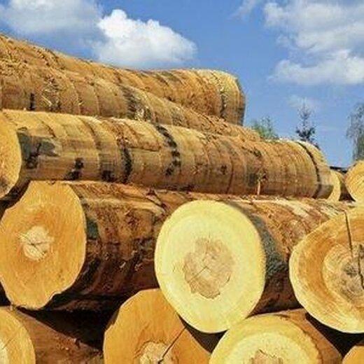 汕头木材报关清关费用明细