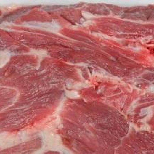 宁波进口冷冻猪肉清关报关操作流程
