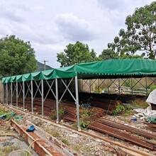 大型工地活动帐蓬、户外遮阳蓬、物流雨棚、物流推拉篷图片