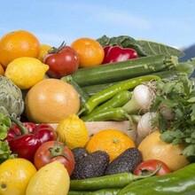 申请农产品区域公共品牌服务