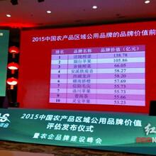 邯郸农产品区域公共品牌服务流程