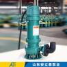 廣東WQB防爆潛污泵多少錢
