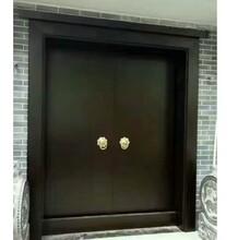 紅樹林3入戶門,云龍區迷你免漆門生態門實木門原木門烤漆門雙開大門圖片