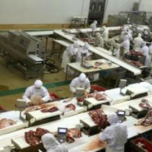撫順出國勞務公司正規出國掙錢招肉制品普工加工員