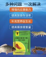 九牧養蝦用維生素C,水產專用VC哪里買圖片
