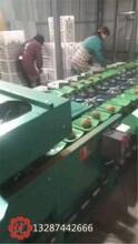 芒果選果機海南地區芒果分選都在用這款機型圖片