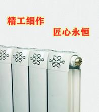 供应TLZY8-6-1.0铜铝复合散热器铜铝暖气片煤改气暖气片图片
