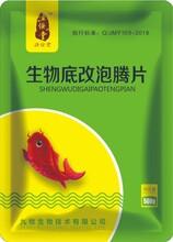 羅非魚調水藥/羅非魚用過硫酸氫鉀復合鹽/羅非魚改底藥圖片