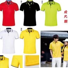 夏季POLO衫定制T恤純棉工作服男短袖定做工衣廣告文化衫diy印logo
