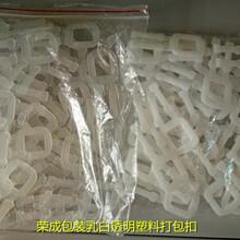 打包扣厂家批发塑料打包扣透明,乳白包装扣现货图片