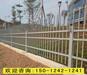 深圳熱鍍鋅柵欄鍍鋅圍墻鐵圍欄廠家生活區隔離柵