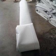 涤纶针刺毡布袋/重庆常温布袋供应/华英环保图片