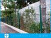 東莞園林鐵絲網隔離柵公路市政欄桿安裝公園鋅鋼圍欄圖片