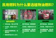 河北石家莊智能電動生活燃料植物油燃料招商加盟