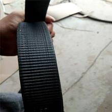 钢塑复合拉筋带CAT30020B价格,土工加筋带厂家图片