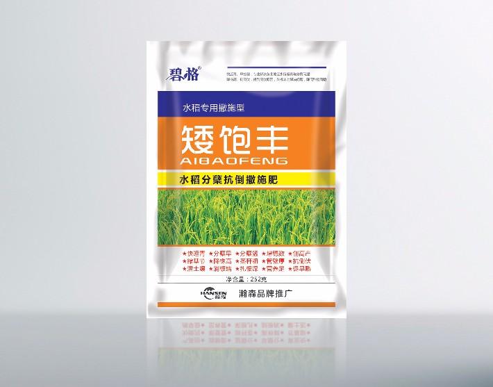 水稻矮饱丰.jpg