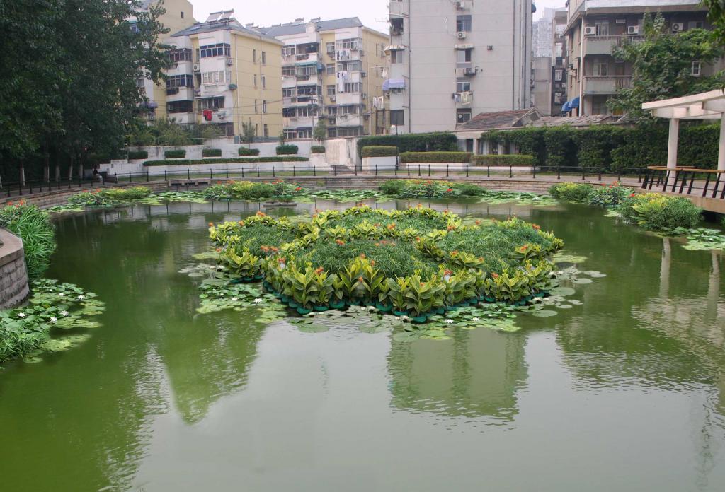近年来有很多美丽的水生植树造景出现,犹如一个美丽的小岛一样,在