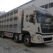 武威地区禽畜运输车哪家比较好图片