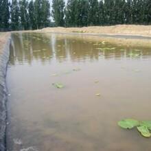 垃圾场防渗膜河道护坡两布一膜蓄水池复合土优游娱乐平台zhuce登陆首页膜图片