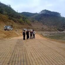 廠家壽命長市政公路施工用纖維土工格柵圖片