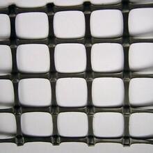 廠家現貨道路施工土工格柵現貨度拉伸鋼塑土工格柵圖片