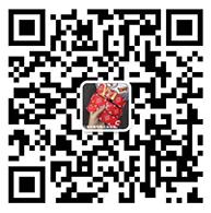 Gucci113货源网,微商货源网 第1张