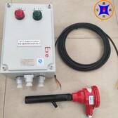煤气锅炉防爆火检BWFZJ-13,紫外线火焰检测器,控制燃料阀