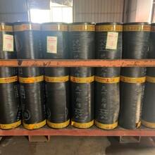 天信4厚耐根穿刺防水卷材一平米出廠價格圖片